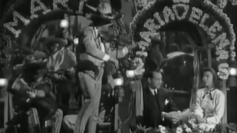 Honeymoon (1947 film) movie scenes