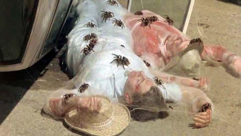 Kingdom of the Spiders movie scenes