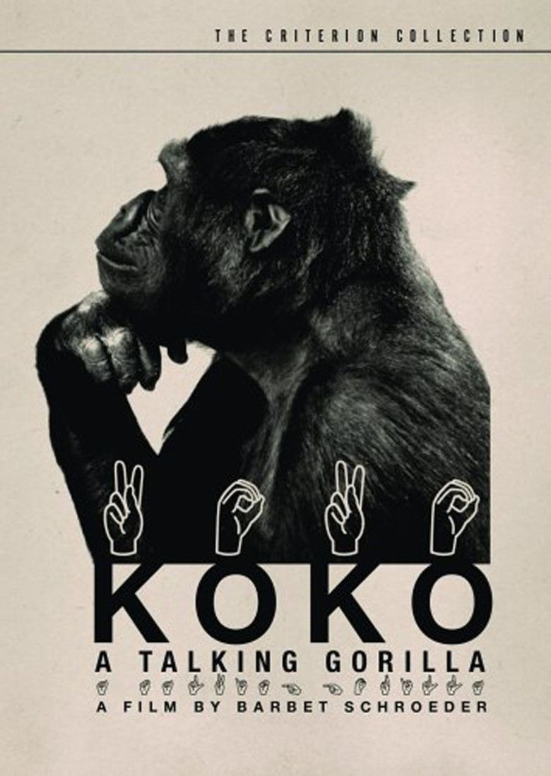 Koko: A Talking Gorilla movie poster