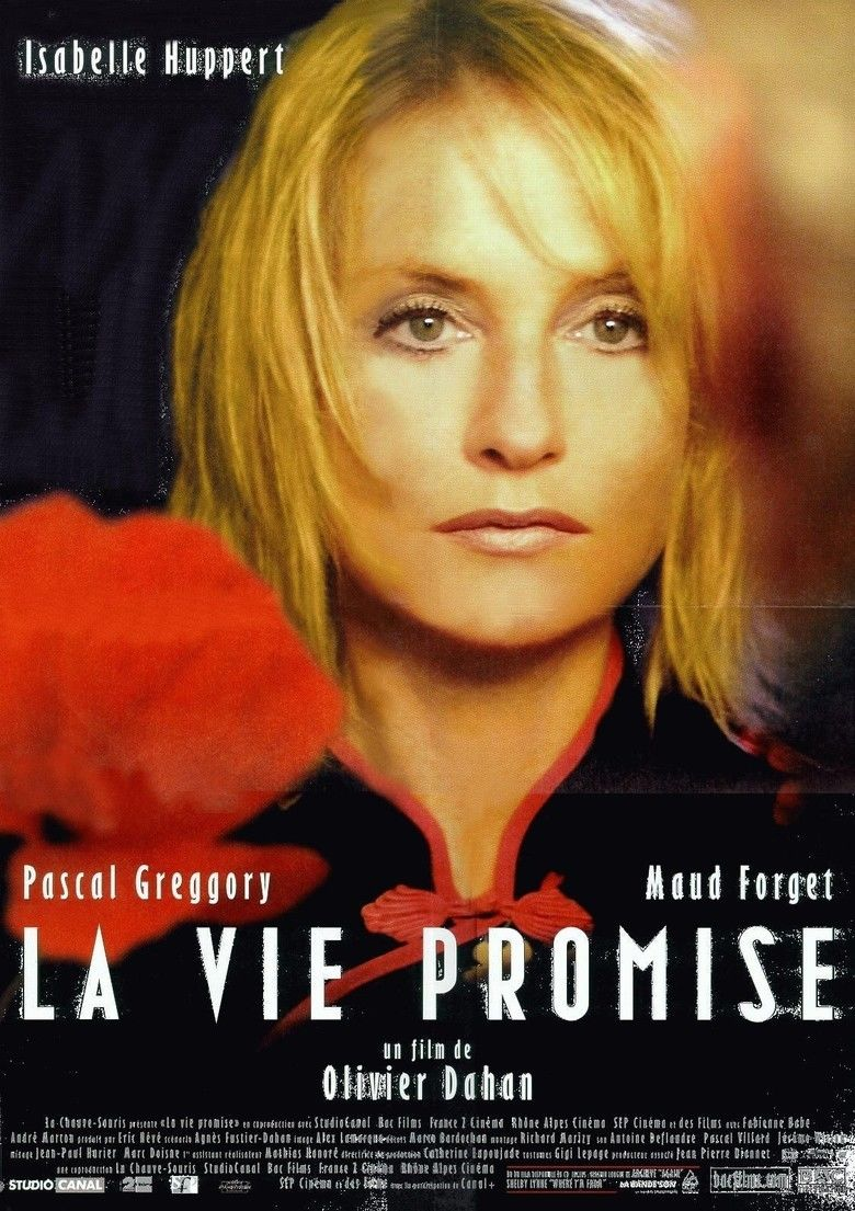 La vie promise movie poster