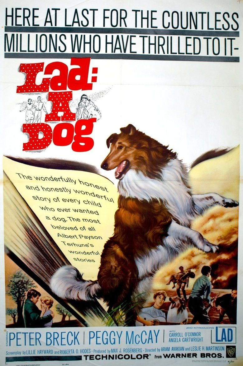 Lad, A Dog (film) movie poster
