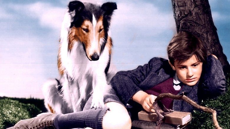 Lassie Come Home movie scenes