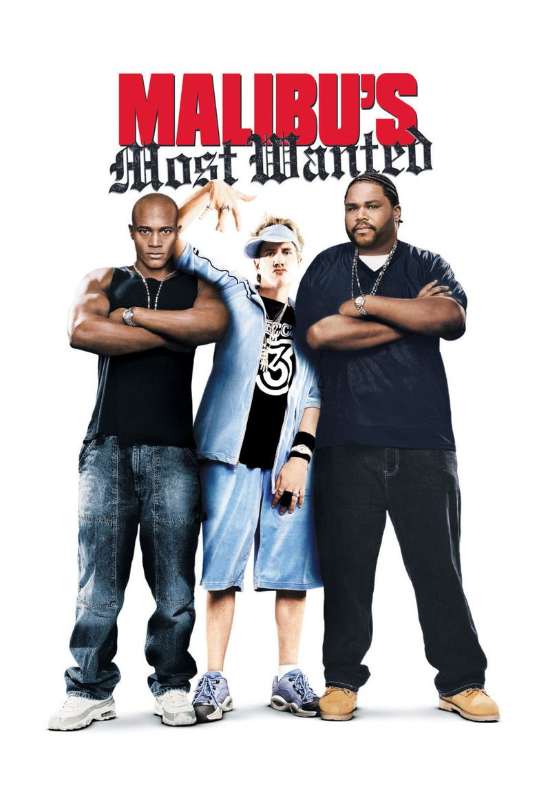 Malibus Most Wanted movie poster