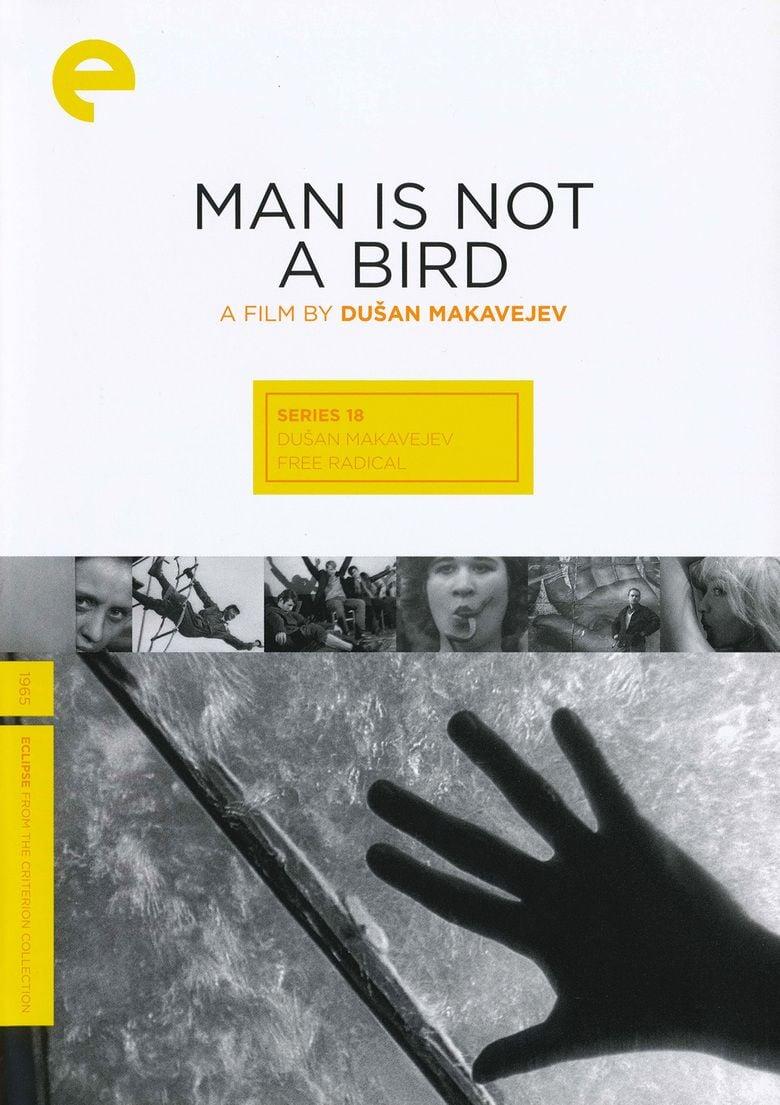 Man Is Not a Bird movie poster