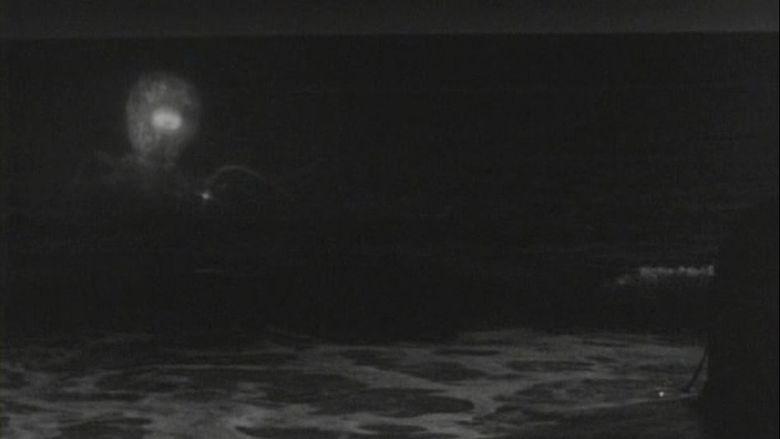 Monster from the Ocean Floor movie scenes