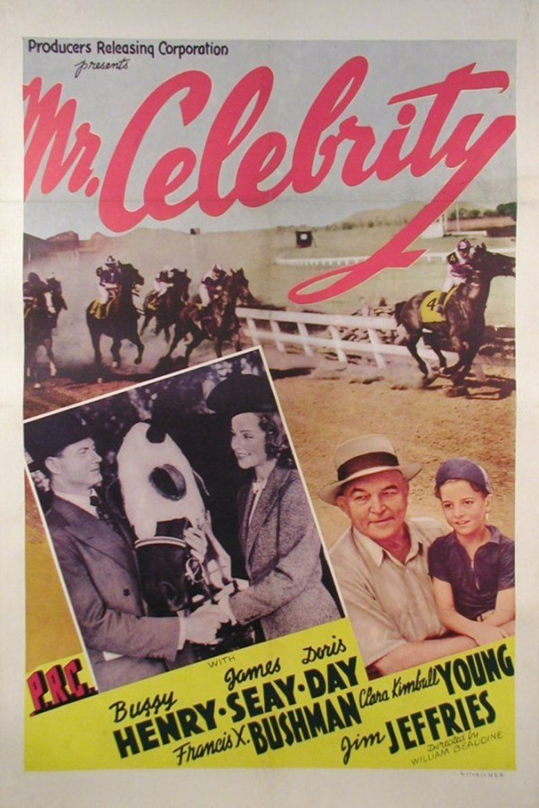 Mr Celebrity movie poster