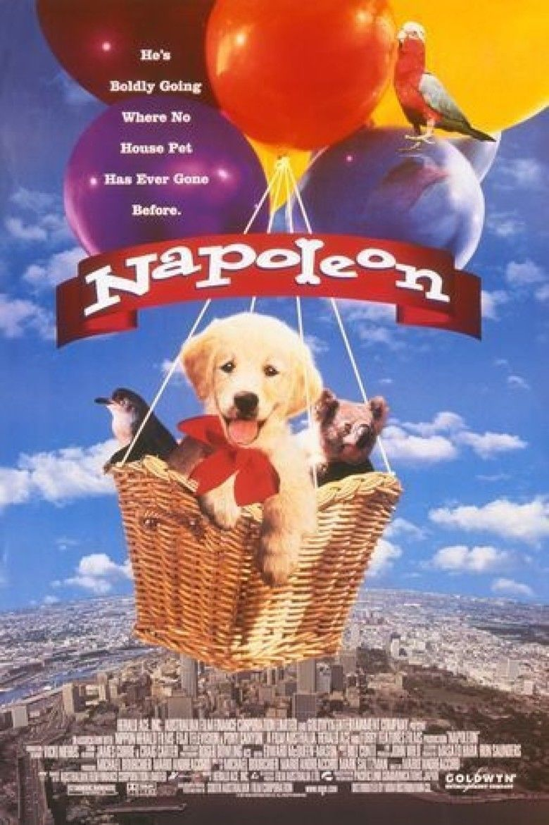 Napoleon (1995 film) movie poster