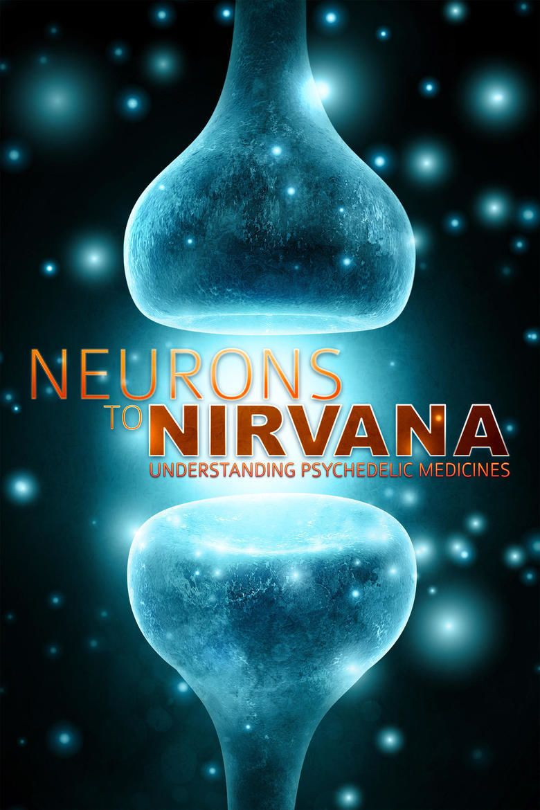 Neurons to Nirvana movie poster