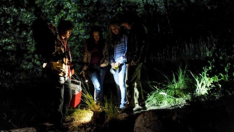 Nightlight (2015 film) movie scenes