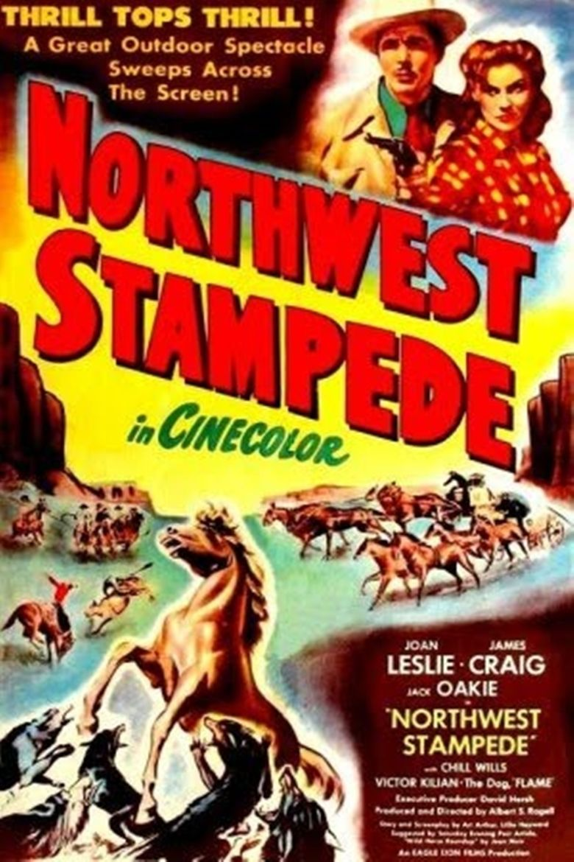 Northwest Stampede movie poster