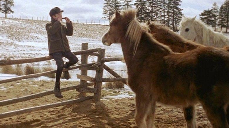 Pit Pony (film) movie scenes