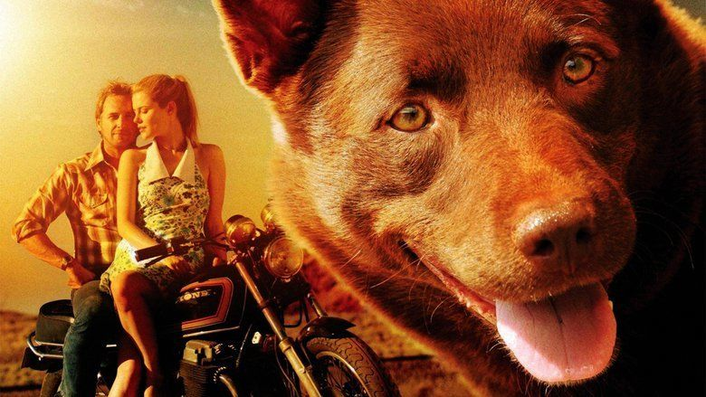 Red Dog (film) movie scenes