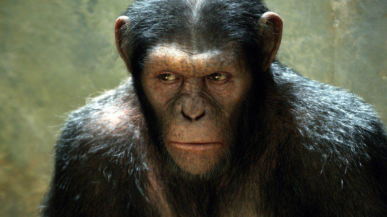 Rise of the Planet of the Apes movie scenes