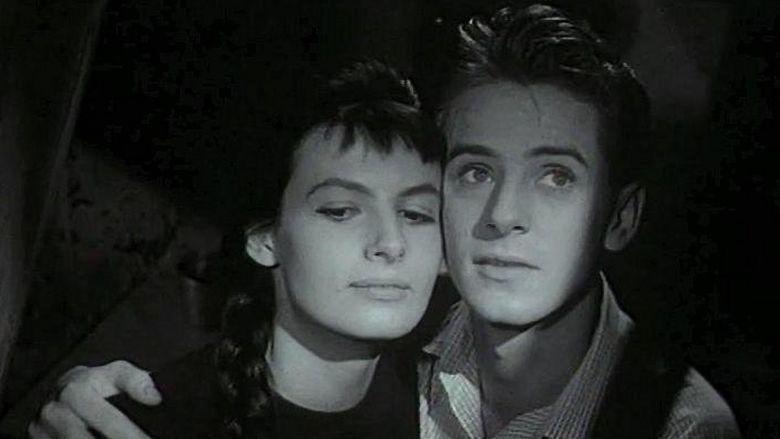 Romeo, Juliet and Darkness movie scenes