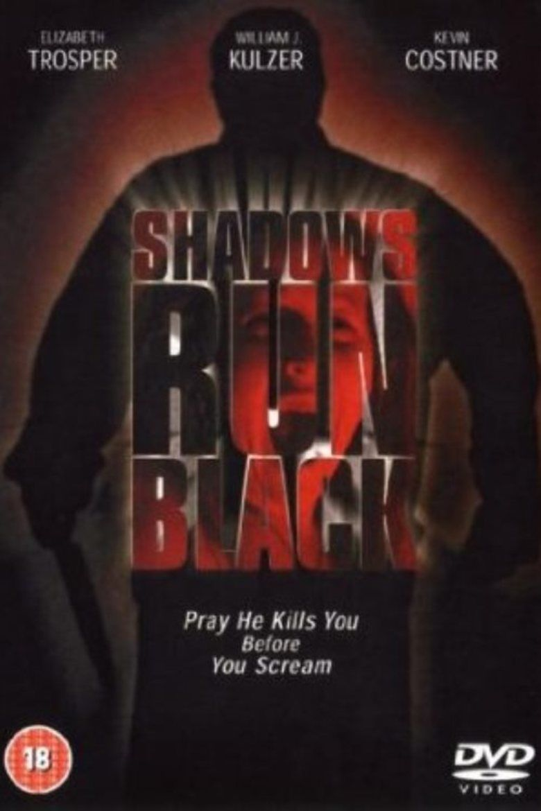 Shadows Run Black movie poster
