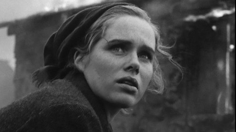 Shame (1968 film) movie scenes