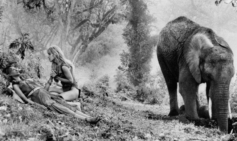 Sheena (film) movie scenes