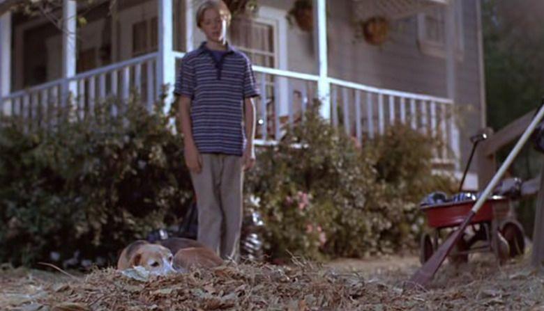 Shiloh 2: Shiloh Season movie scenes