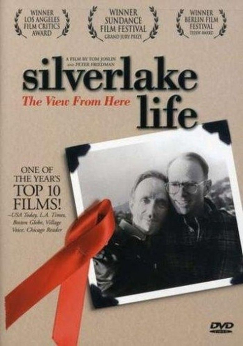 Silverlake Life: The View from Here movie poster