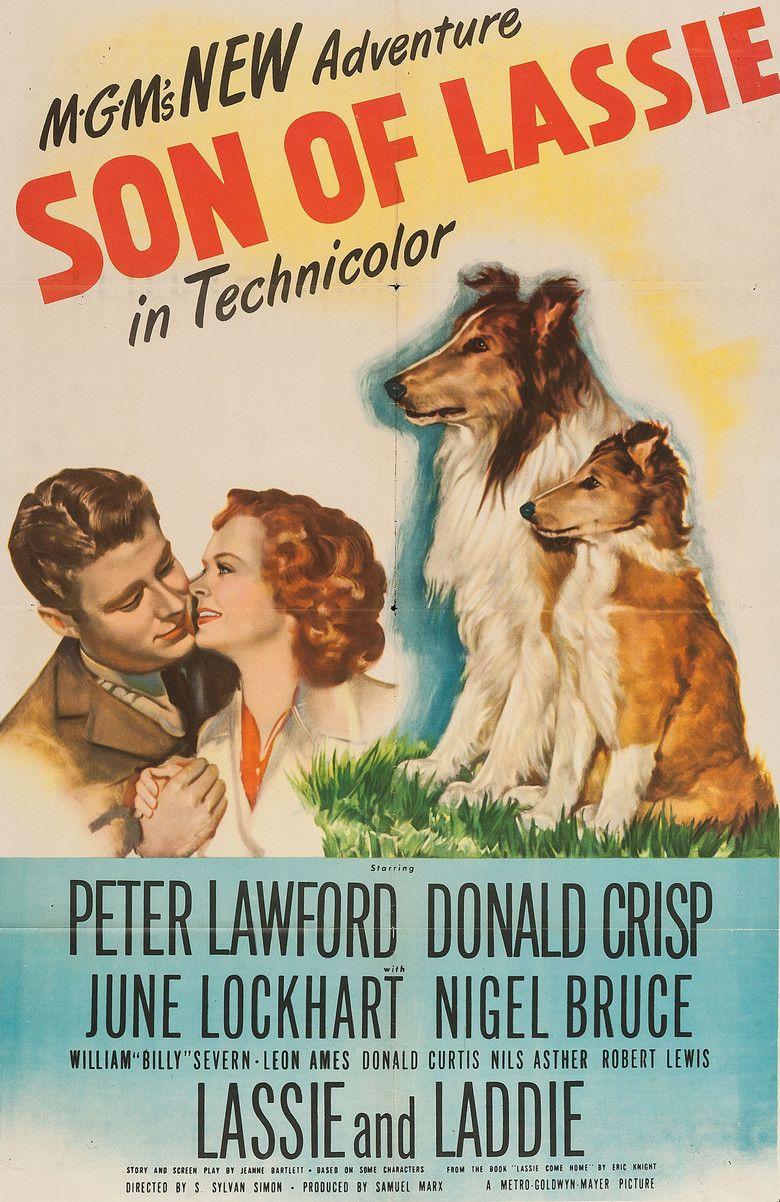 Son of Lassie movie poster