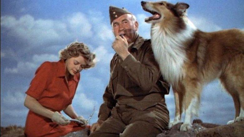 Son of Lassie movie scenes