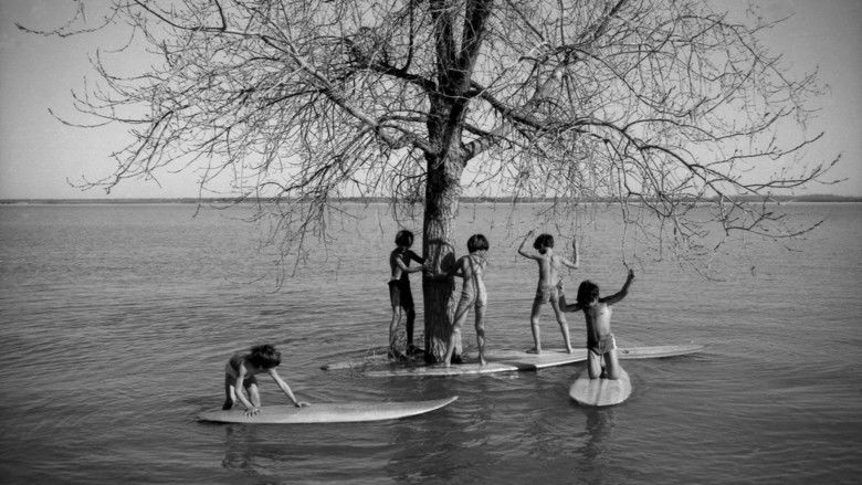 Surfwise movie scenes
