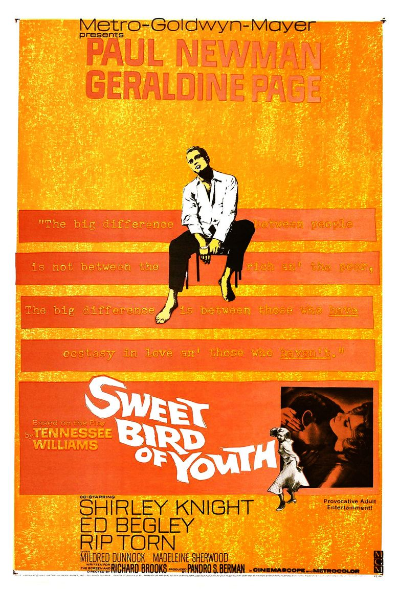 Sweet Bird of Youth movie poster
