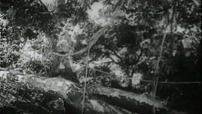 Tarzan the Fearless movie scenes