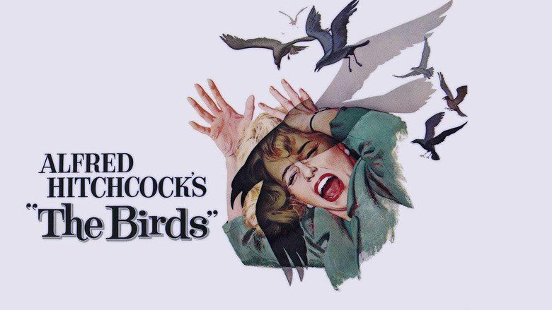 The Birds (film) movie scenes