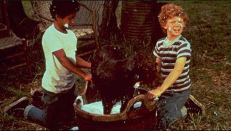 The Biscuit Eater (1972 film) movie scenes