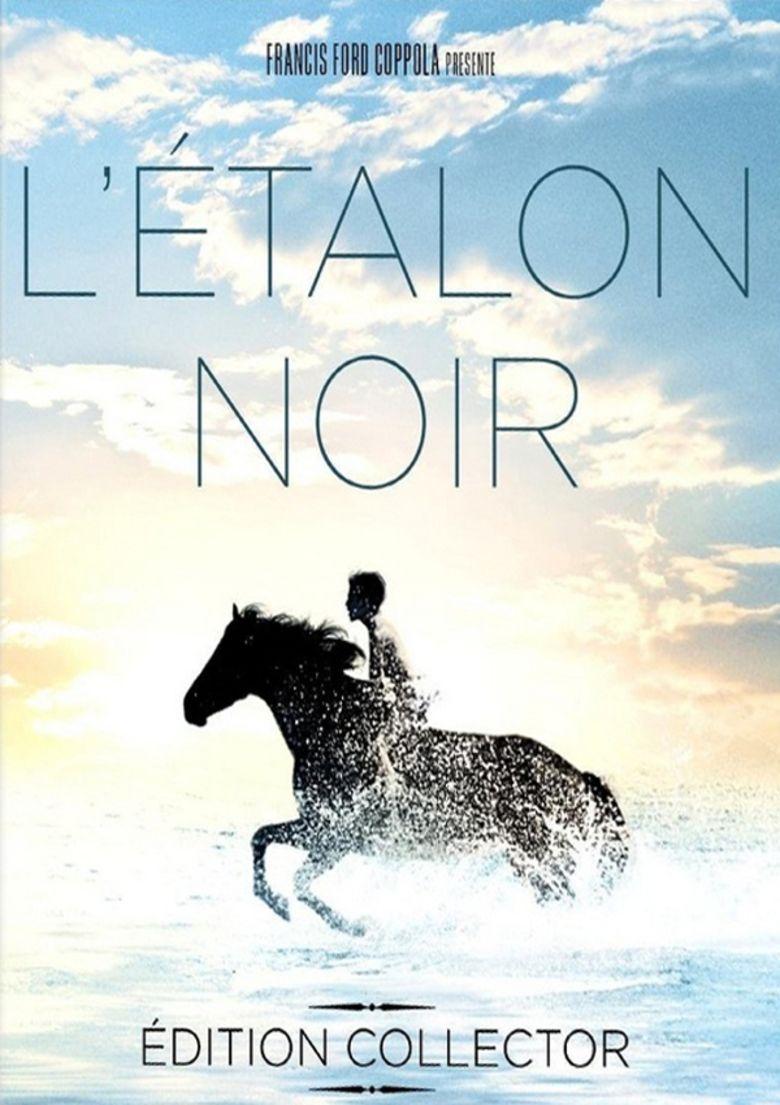 The Black Stallion (film) movie poster