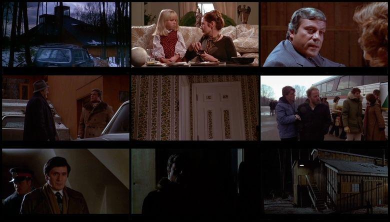 The Brood movie scenes