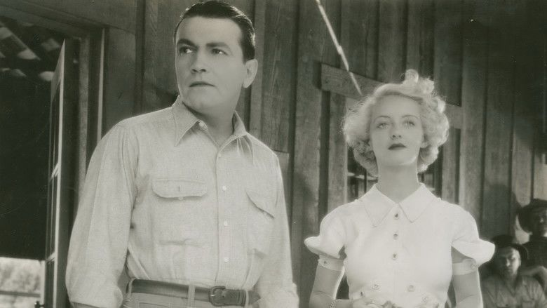 The Cabin in the Cotton movie scenes