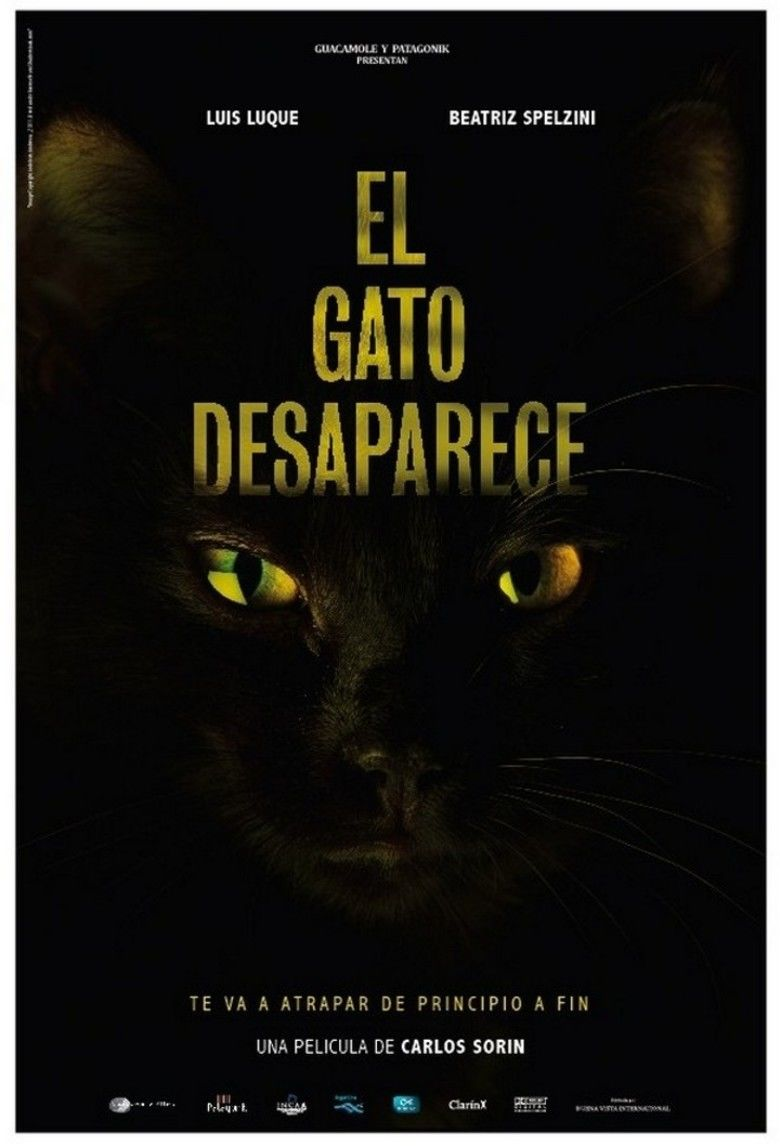 The Cat Vanishes movie poster