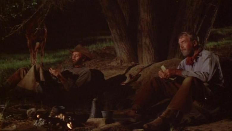 The Cheyenne Social Club movie scenes