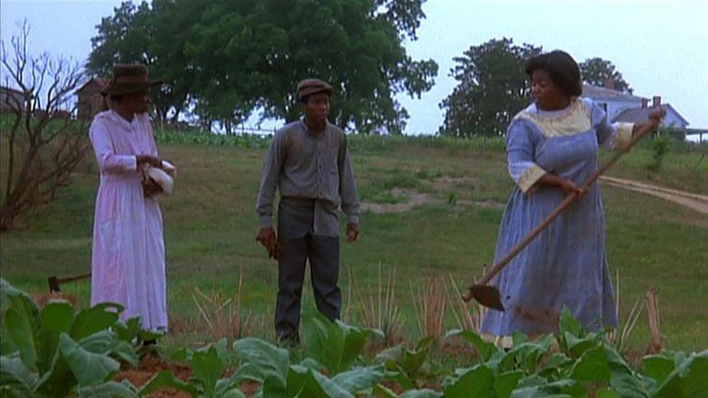 The Color Purple (film) movie scenes