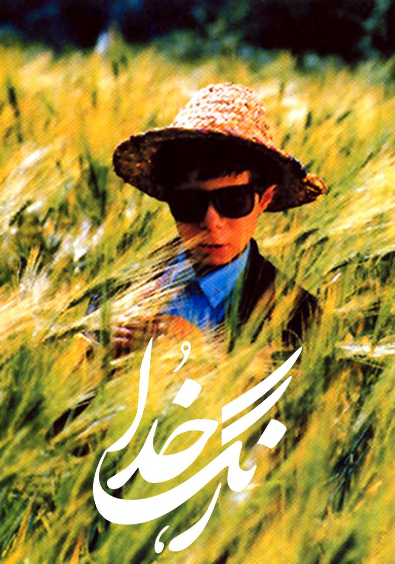 The Color of Paradise movie poster