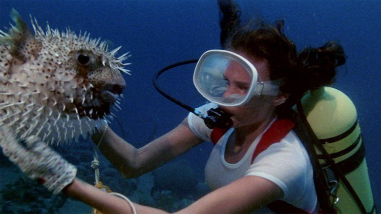 The Deep (1977 film) movie scenes