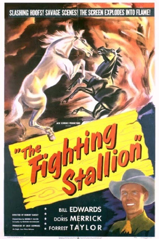 The Fighting Stallion movie poster