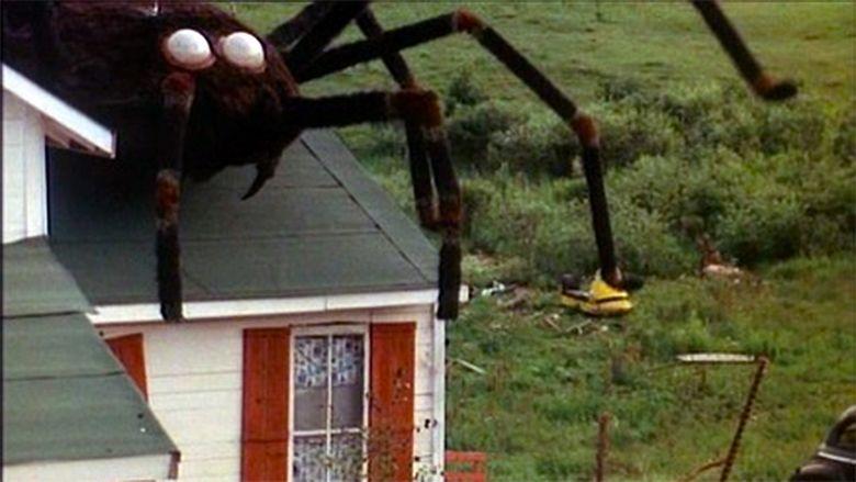 The Giant Spider Invasion movie scenes