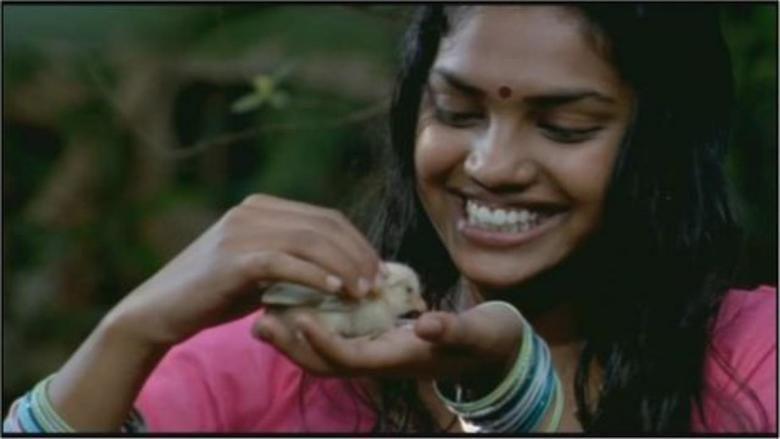 Www tamil movies free downloads com
