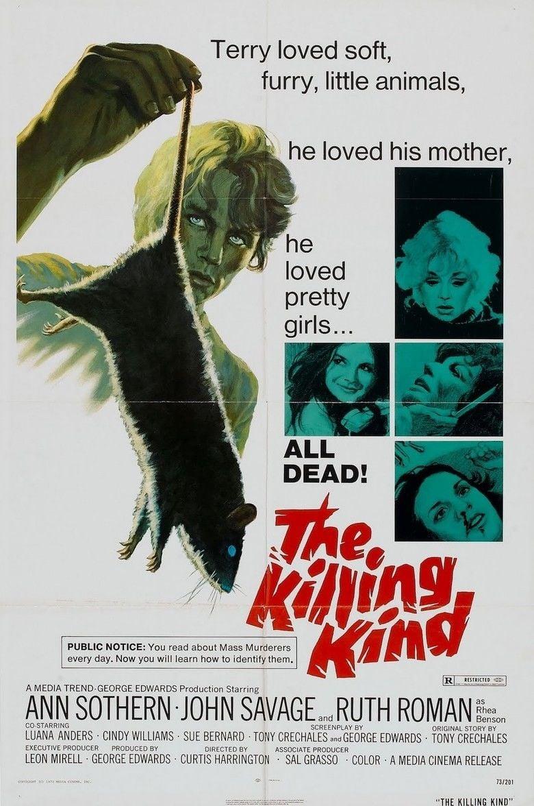 The Killing Kind (1973 film) movie poster
