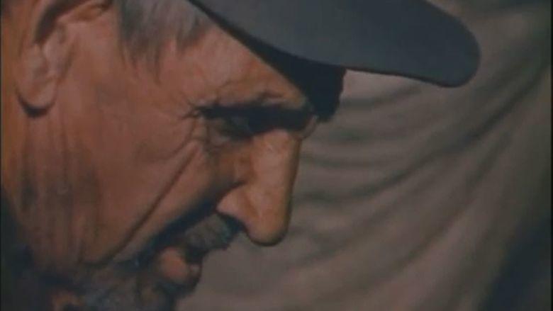 The Legend of Boggy Creek movie scenes