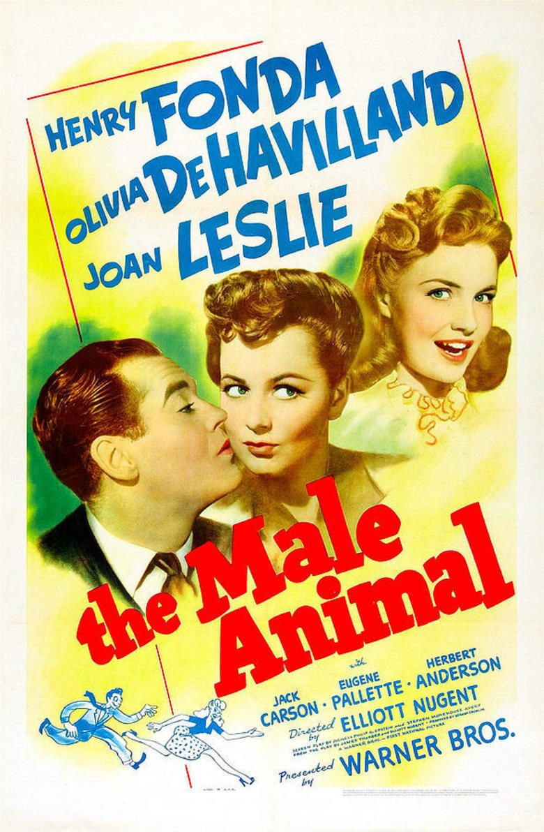 The Male Animal movie poster