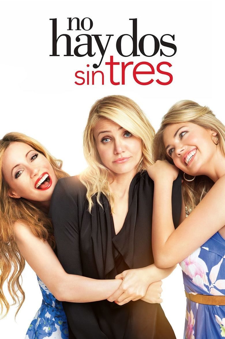 The Other Woman (2014 film) movie poster