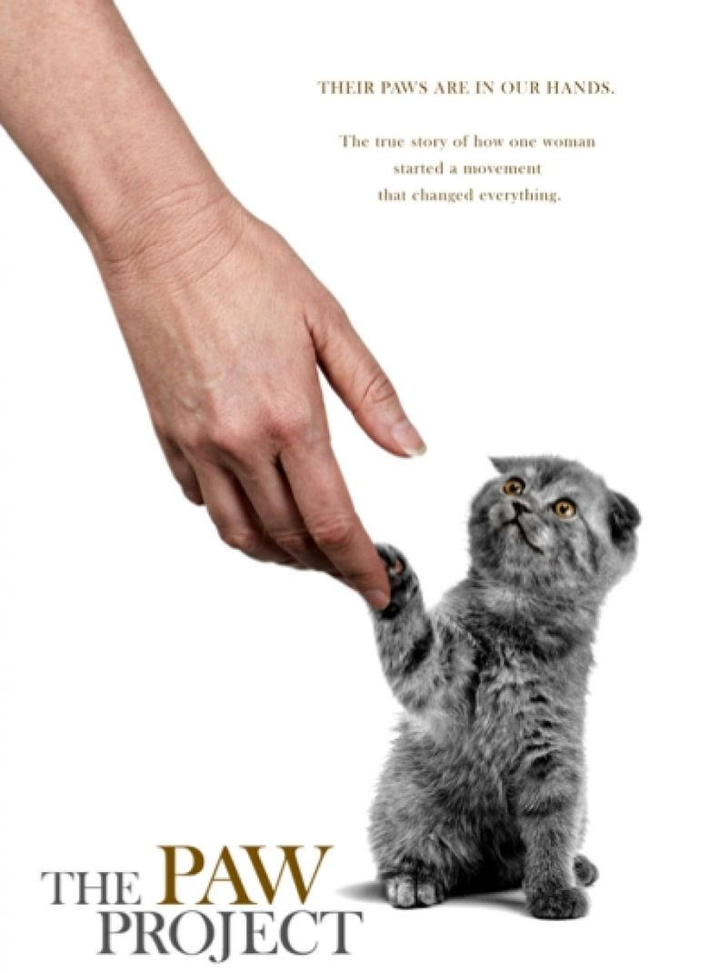 The Paw Project movie poster