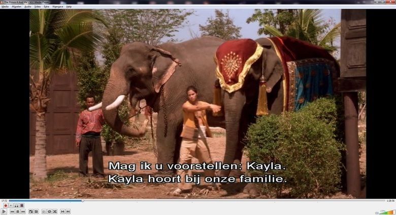 The Prince and Me 4: The Elephant Adventure movie scenes