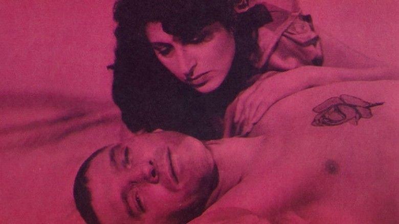 The Rose Tattoo (film) movie scenes