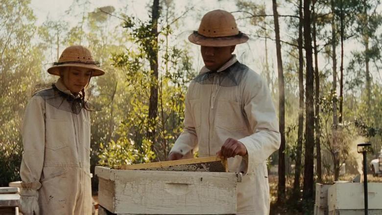 The Secret Life of Bees (film) movie scenes