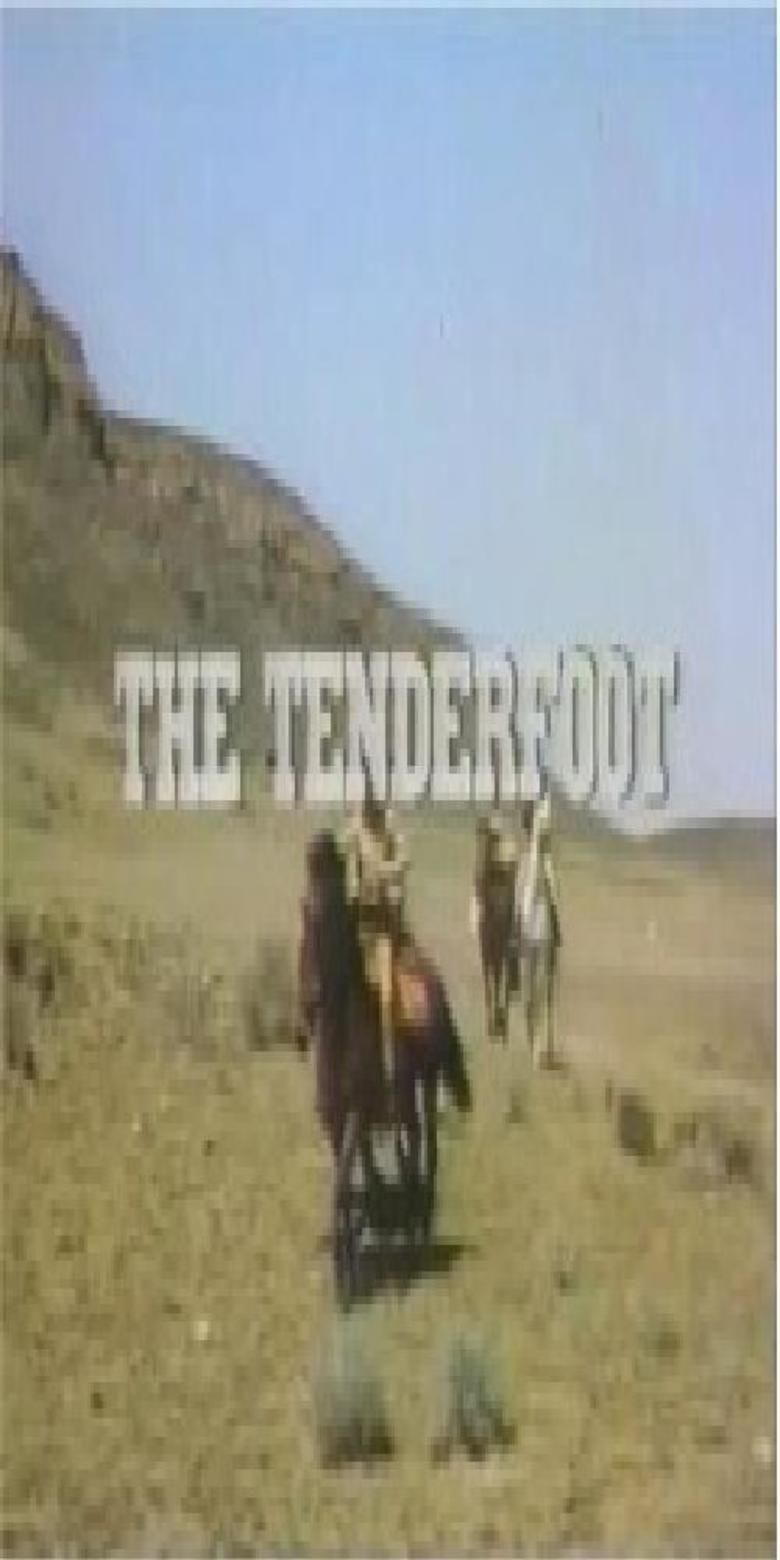 The Tenderfoot (miniseries) movie poster